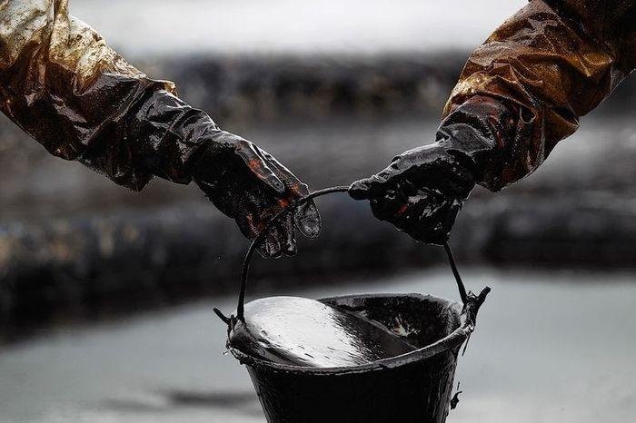 Цена на нефть – прогноз на ноябрь 2015 года, динамика роста мировых цен на нефть